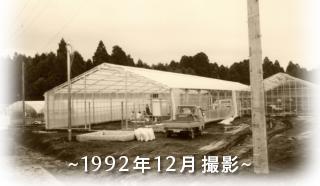 1992年12月撮影